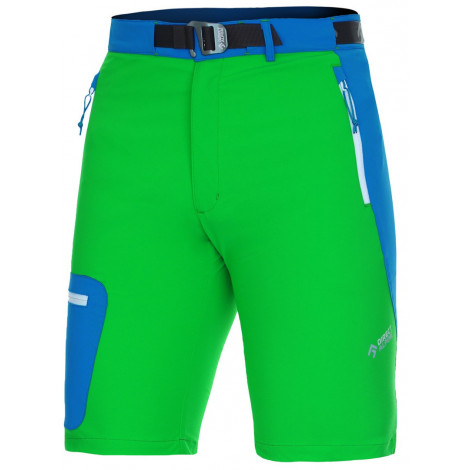 Шорты Direct Alpine CRUISE SHORT green/blue